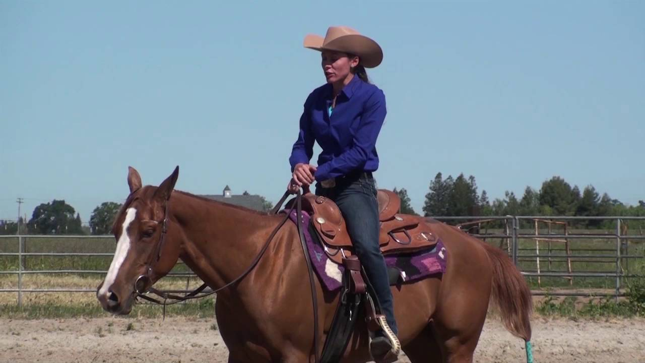 Watch How to Back Up on a Horse video