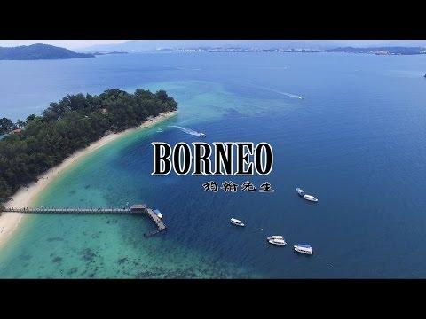 Into the Wild - Borneo 婆罗洲