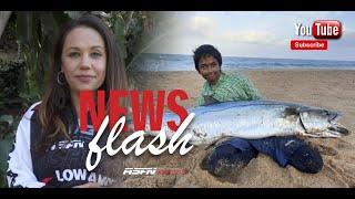 ASFN News Flash - WOW Impressive catches #fishing @ASFN Fishing