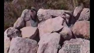 rmg malatya pütürge aslankent köyü kamkina keklik avı