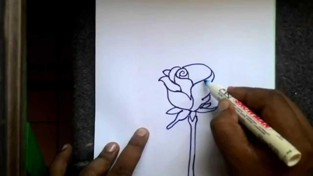 Cara Menggambar Bunga Sederhana - YouTube