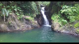 Video Paria Waterfall, Trinidad download MP3, 3GP, MP4, WEBM, AVI, FLV Januari 2018