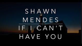 Shawn Mendes - If I Can't Have You (Lyrics/Tradução/Legendado)