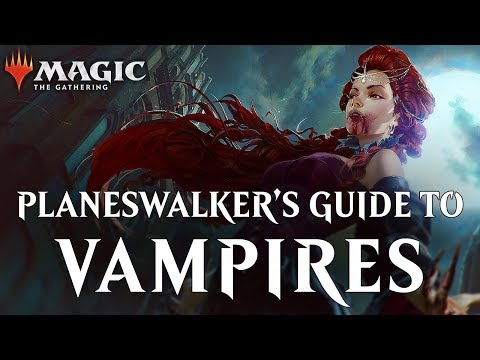 Planeswalker's Guide to