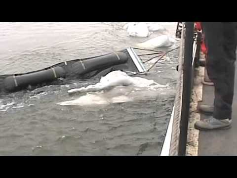 What If An Oil Spill Happened in the Arctic?