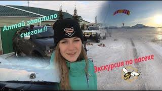 Алтай завалило снегом - Масленица 2020 на пасеке в горах! Экстремальные развлечения для всех!