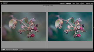 LaKe Lightroom Tutorials - Workflow: Herbstbild für 500px