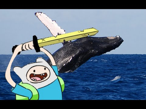 The Untitled Project 1.2: Finn and Jake Save the Whales
