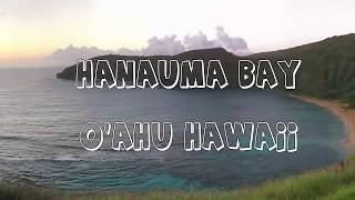Hanauma Bay Snokeling 2018 Tips - Fish - Sea Turtles