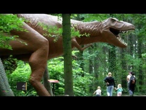 Dinosaur Extinction Lead to Mammal...