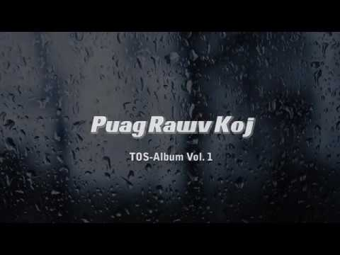 Travis Lee - Puag Rawv Koj (Lyric Video)