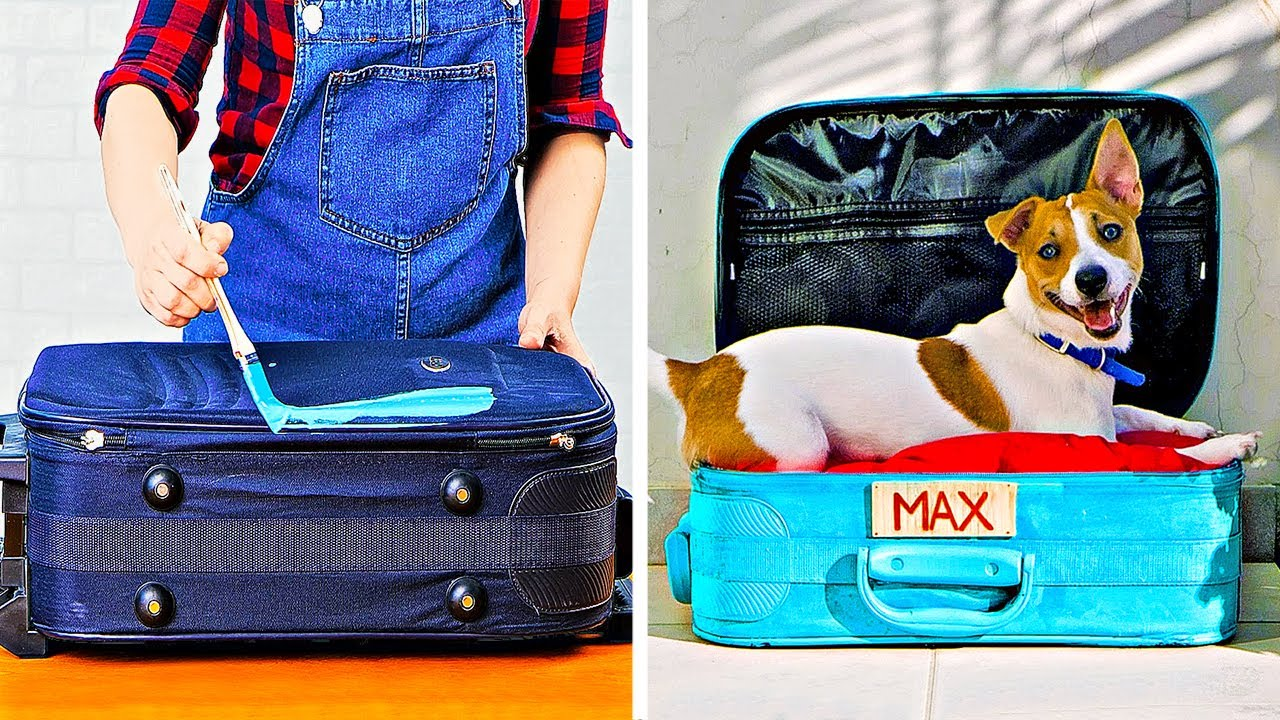 32 AMAZING HACKS AND CRAFTS FOR PET LOVERS
