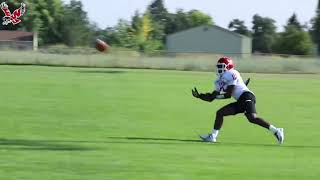 2019 Eags Camp: First Day of Full Practice
