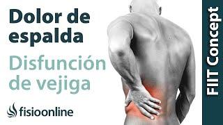 Dolor de dolor las espalda baja en piernas tratamiento de