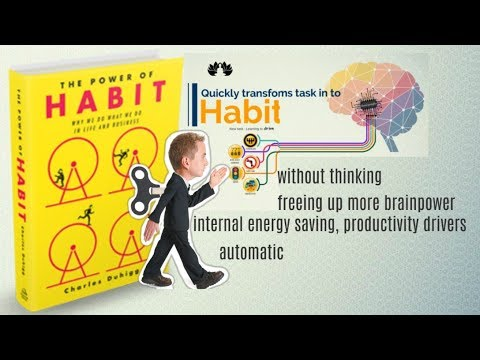 book the power of habit by charles duhigg