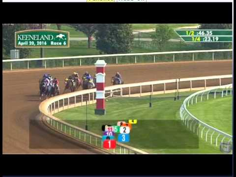 Horsepower - 2016 Keeneland Claiming Race - First Place Finish