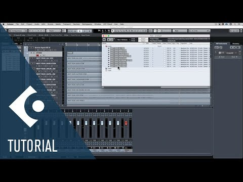 Change the Tempo for a Remix | Audio Editing and Warping