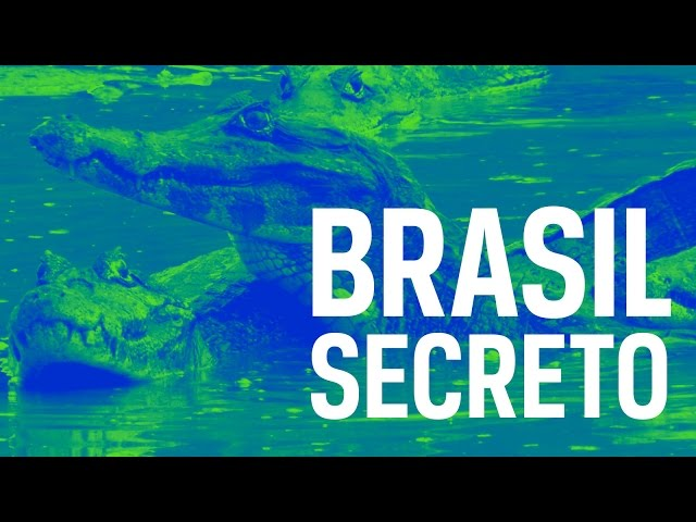 Brasil Secreto  Pantanal