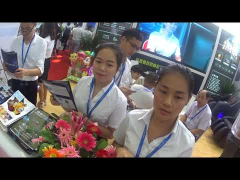 China Shenzhen IoT Fair Exhibition 2017 08 16   2