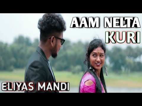 Santali Video Song - Aam Nelta Kuri