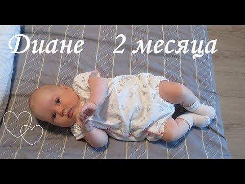 Ребенку 2 месяца. Что мы умеем?