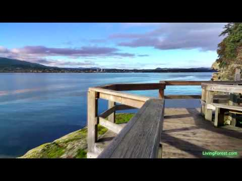 Jack Point and Biggs Park winter walk - best sunsets and waterfront views of Nanaimo