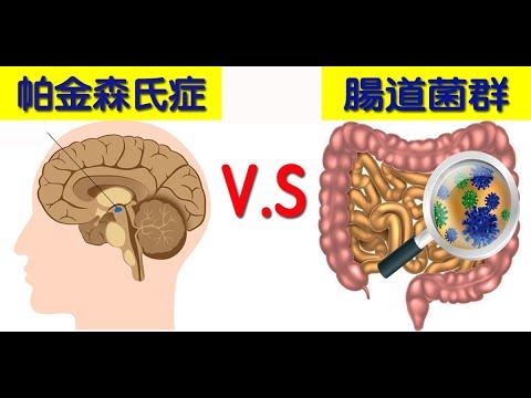 【帕金森氏症】病因找到了!美最新研究:「腸道細菌」是關鍵!