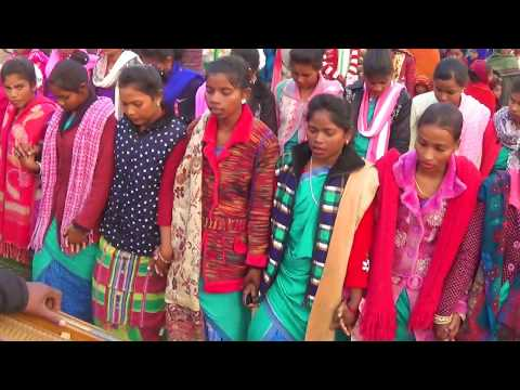 Sohray video 2018, Godda collegge godda, jharkhand, by Santal rusika