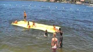 Aqua Lily Pad - Fiesta Day