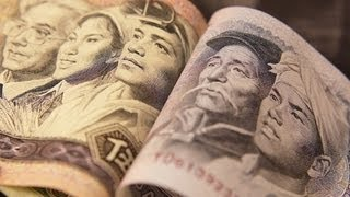 Will there be a shortage of spending power? - Professor Douglas McWilliams thumbnail