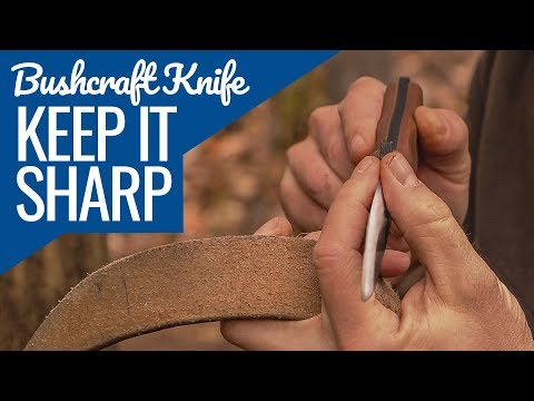 Download Youtube: Keep a Sharp Bushcraft Knife with NO Sharpening Stone & A Simple Bushcraft Tea Recipe