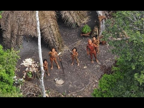 Uncontacted Amazonian tribe 'slaughtered by gold miners'