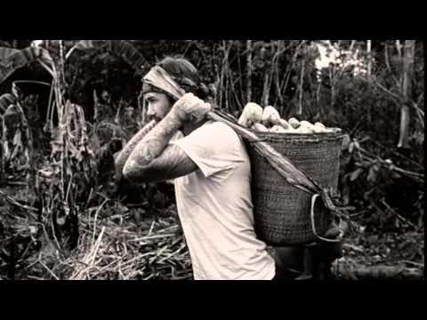 David Beckham ventures into Amazon rainforest   Into The Unknown