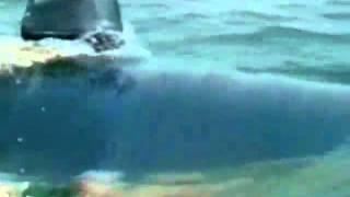 НЛО Подводные пришельцы