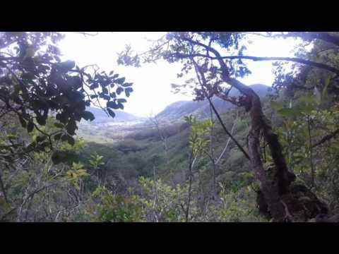 upper manoa falls hike GoPro