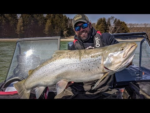 Gigantic Brown Trout - In-Depth Outdoors TV Season 12, Episode 19