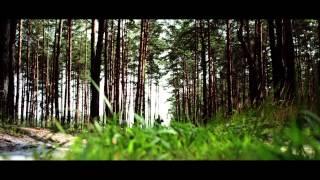 """Короткометражный фильм """"Карусель"""" (short film """"The carrousel"""")"""
