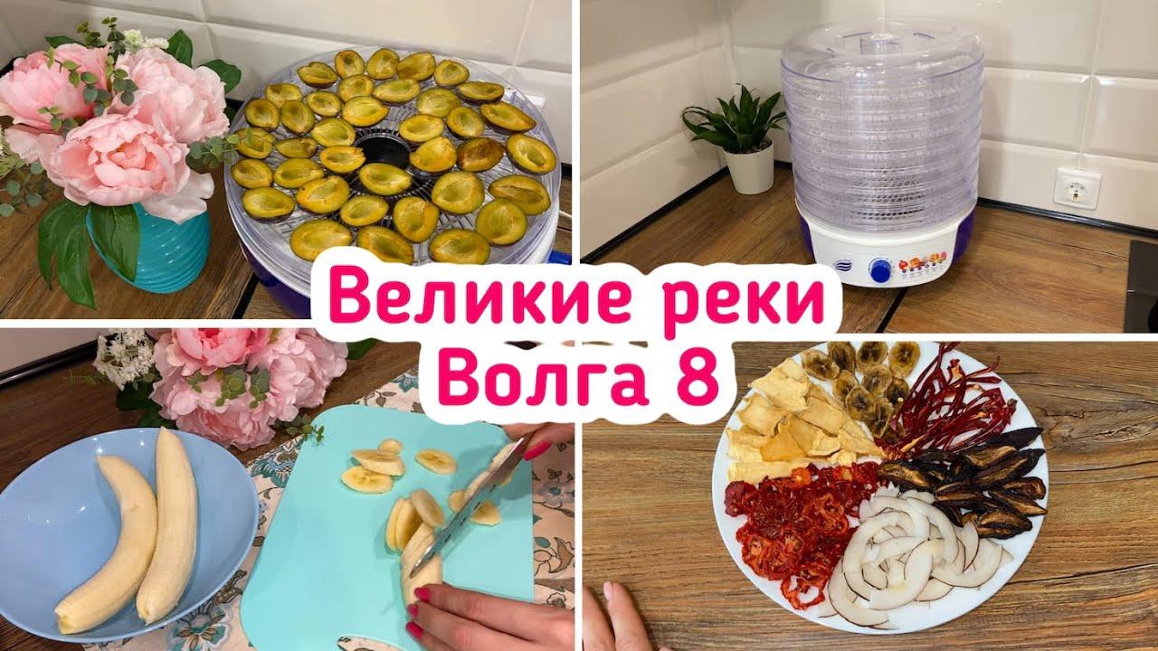 Сушилка Великие реки / Волга 8 / Сушу овощи и фрукты!