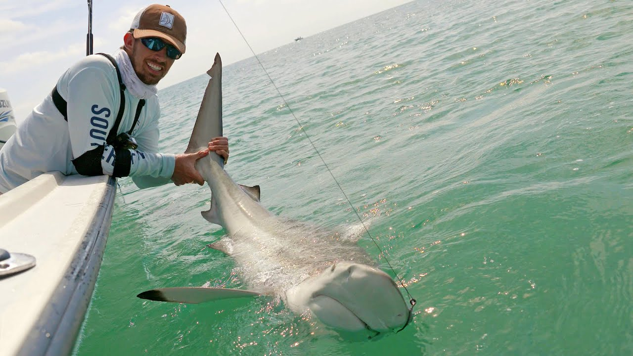 Fishing the Blacktip Shark Migration - ft. Chew On This ...