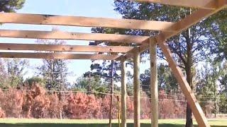 Building A Henhouse 1