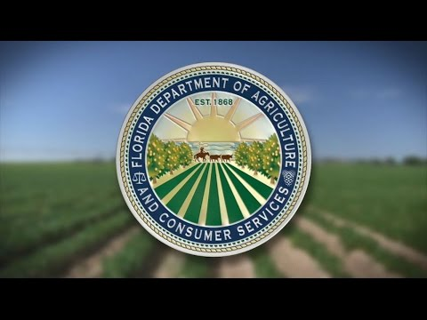 Florida Department Of Agriculture And Consumer Services - Overview