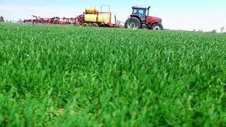 Projet de réduction des pesticides