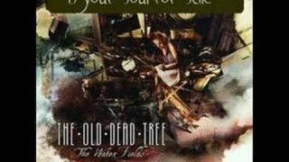 Watch Old Dead Tree Is Your Soul For Sale video