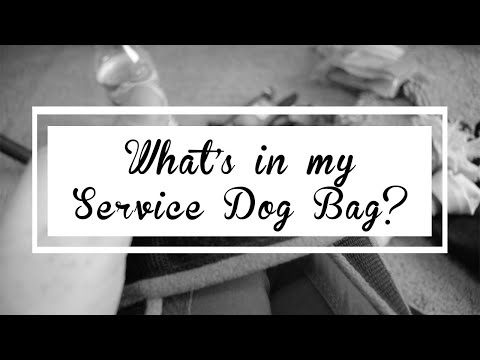 what's-in-my-service-dog-bag?-[cc]