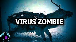 VIRUS ZOMBIE: 3 Misterios Más Escalofriantes Que involucran a Animales