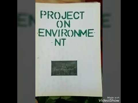 ECONOMICS PROJECT on ENVIRONMENT for class 11