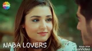 الورد البلدي   حياة و مراد   الحب لا يفهم من الكلام   Hayat Ve Murat
