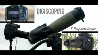 Digiscoping with Celestron Ult…