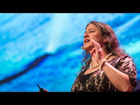 Video image: How whales breathe, communicate ... and fart with their faces - Joy Reidenberg