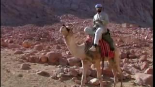Монастырь Святой Екатерины. Синай(, 2016-12-07T06:47:57.000Z)